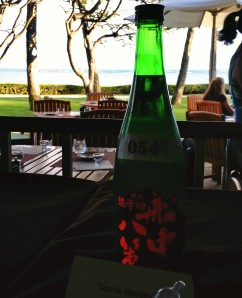 A bottle of junmai, and a great view. What more could you ask for?